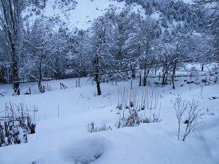 Mas Nieve….mas resfriado…..y a entrenar!!!